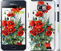 "Чехол на Samsung Galaxy S2 i9100 Маки ""523c-14"""