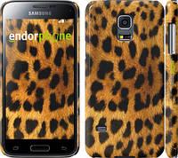 "Чехол на Samsung Galaxy S5 mini G800H Шкура леопарда ""238c-44"""