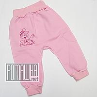 Тёплые детские штанишки р 62 1 2 3 мес наружные швы широкая еврорезинка для новорожденных ФУТЕР 3179 Розовый В