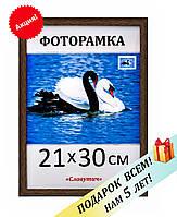 Фоторамка пластиковая А4, 21х30, рамка для фото, дипломов, сертификатов, грамот, картин,1411-33