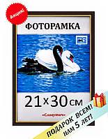 Фоторамка пластиковая А4, 21х30, рамка для фото, дипломов, сертификатов, грамот, картин 1512-124