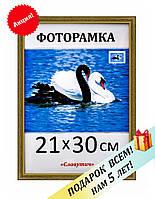 Фоторамка пластиковая А4, 21х30, рамка для фото, дипломов, сертификатов, грамот, картин 1512-314