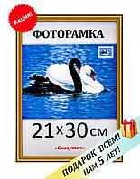 Фоторамка пластиковая А4, 21х30, рамка для фото, дипломов, сертификатов, вышивок 1512-47