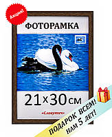 Фоторамка пластиковая А4, 21х30, рамка для фото, дипломов, сертификатов, грамот, вышивок 1411-33