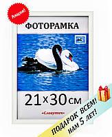Фоторамка пластиковая А4, 21х30, рамка для фото, дипломов, сертификатов, грамот, вышивок 1411-14