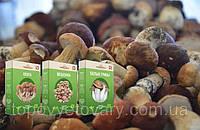 Чудо грибница готовый засеянный мицелий для выращивания грибов дома 6 видов