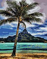 """Картина за номерами """"На Гаваях"""" 40*50см"""