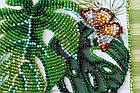 Набор-миди для вышивки бисером Монстера (20 х 20 см) Абрис Арт AMB-028, фото 3