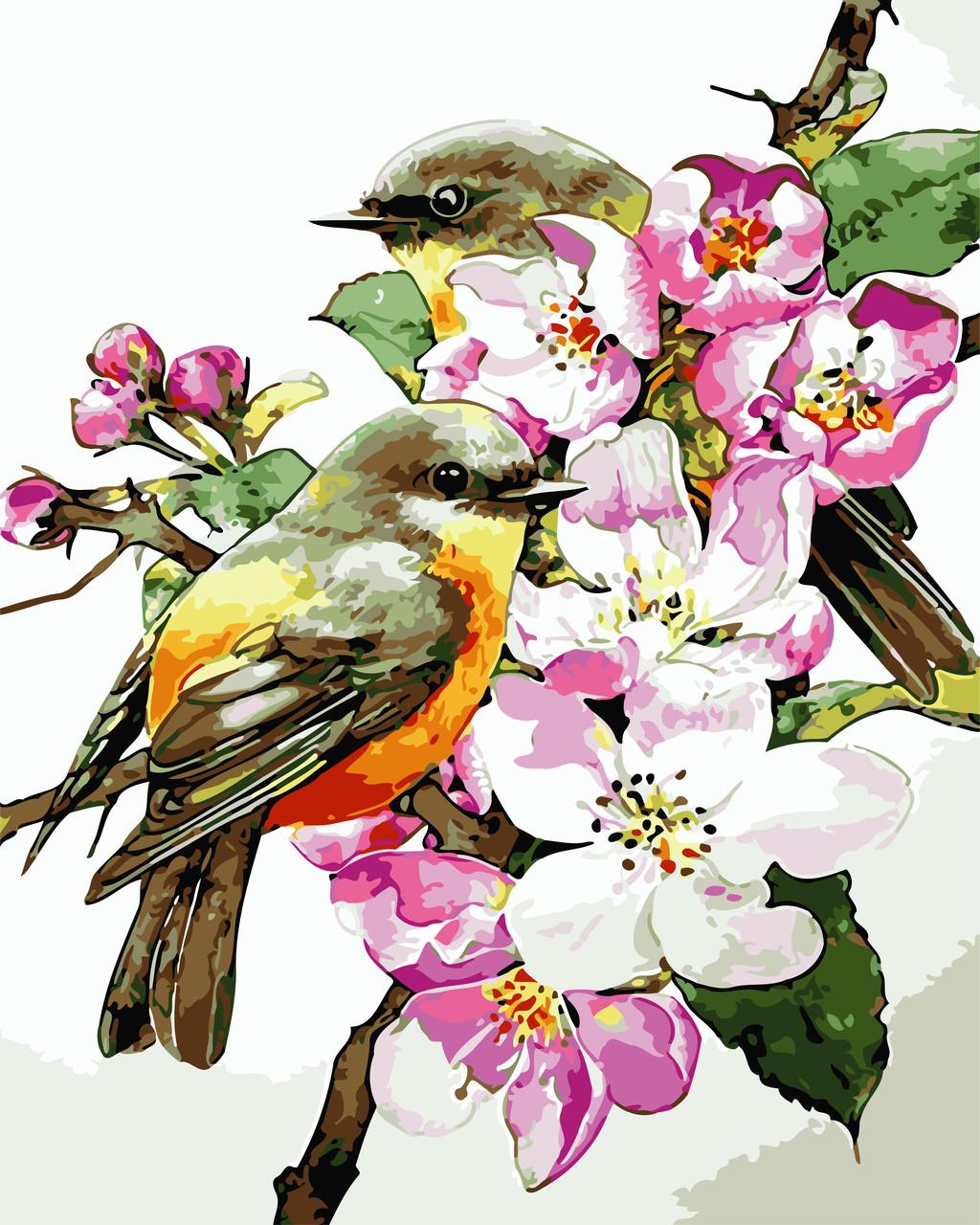 """Картина по номерам """"Птицы на ветке"""" 40*50см"""
