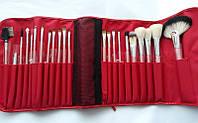 Подарок к Рождеству Набор кистей для макияжа Pro Brush Set - NY Collection - 22pc