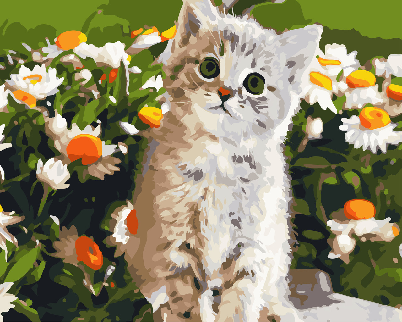"""Картина по номерам """"Кот и ромашки"""" 40*50см"""