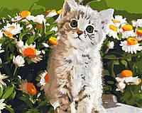 """Картина по номерам """"Кот и ромашки"""" 40*50см, фото 1"""