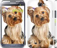 """Чехол на Samsung Galaxy Note 2 N7100 Йоркширский терьер с хвостиком """"930c-17"""""""