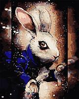 """Картина по номерам """"Загадочный кролик"""" 40*50см"""