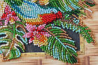 Набор-миди для вышивки бисером Попугаи лори (20 х 20 см) Абрис Арт AMB-029, фото 3