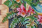 Набор-миди для вышивки бисером Попугаи лори (20 х 20 см) Абрис Арт AMB-029, фото 5