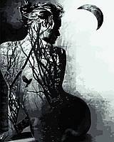"Картина за номерами ""Душа жінки"" 40*50см"