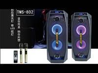 Колонка аккумуляторная Temeisheng TMS-802