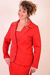 Юбка из фактурного коттона, цвет терракот, дизайнерская модель, 50,52,54,56 , ю 005-5., фото 7