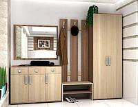 Шкаф для одежды в прихожую Polo ( Поло)