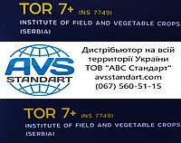 Новинка від Нови Сад, Сербія та компанії Євросем. Ультраранній соняшник ТОР 7+ стійкий до сьоми рас вовчка A-G+. Ранньостиглий, тривалість насіння ТОР врожайний 42 ц/га. Преміум клас насіння.