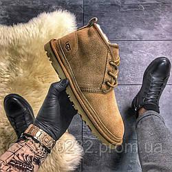 Мужские ботинки зимние  UGG Classic Short (мех) (рыжий)