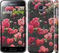 """Чехол на Samsung Galaxy S5 mini G800H Куст с розами """"2729c-44"""""""