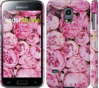 "Чехол на Samsung Galaxy S5 mini G800H Пионы v3 ""2739c-44"""