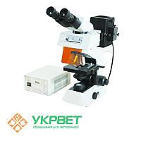 Микроскоп люминесцентный, бинокулярный XS-3320, MICROmed