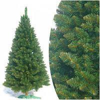 Ёлка классическая лесная 1.5м ( 150 см) новогодняя ЭКО елка лесная с подставкой