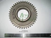 Шестерня промежуточная привода раздаточной коробки ЮМЗ 8240 76-1802081 Z41