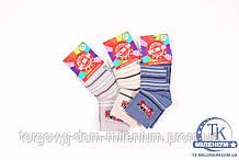 Носки для мальчика всесезонные KBS (5) размер 24-26 3-10115