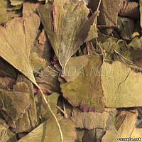 Гинкго билобе листья сушеные 50 гр.