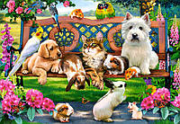 Пазлы Домашние животные в парке на 1000 элементов