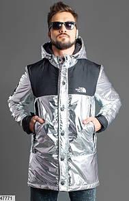 Мужская Куртка Осень-Зима The North Face