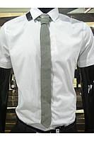 Галстук светло-серый
