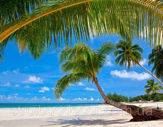 Глянцевые Фотообои  пляж в пальмах разные текстуры , индивидуальный размер