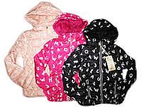Куртка для девочек демисезонная, размеры 10,16 лет, Grace, арт. 50900