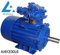 Вибухозахищений електродвигун АИУ200L6 30 кВт 1000об/хв