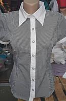 Блуза женская с воротником в клетку