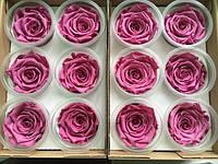 Роза стабилизированнаявиола
