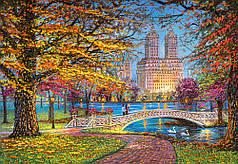 Пазлы Центральный парк, Нью-Йорк на 1500 элементов