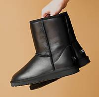 Женские зимние ботинки ORIGINAL UGG Classic Short Black Lather (фото в живую) оригинальные Угги