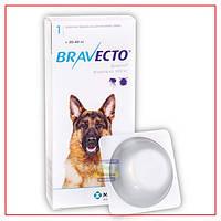 Таблетки Bravecto 20-40 кг (Бравекто)от блох и клещей для Собак