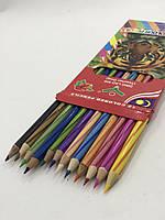 Набор цветных карандашей Colour pencils 11012, 12 шт