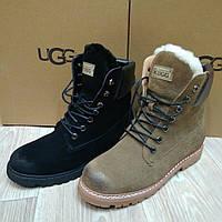 Ботинки женские Ugg Australia зима песочный замш