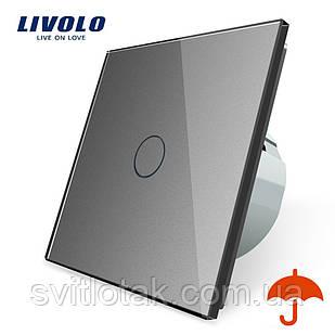 Сенсорный выключатель Livolo для улицы с защитой от брызг IP44 серый стекло (VL-C701IP-15)