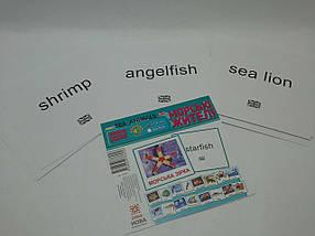 Зірка Картки міні Морські жителі 17 карток, фото 2