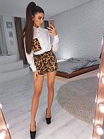 Комплект:  Белая рубашка с леопардовым карманом и шортами, фото 1