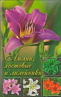 Лилии хостовые и лилейники